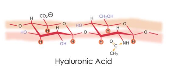 Филлеры на основе гиалуроновой кислоты