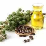 Касторовое масло для лица – от морщин? А еще для красивых бровей и ресниц!